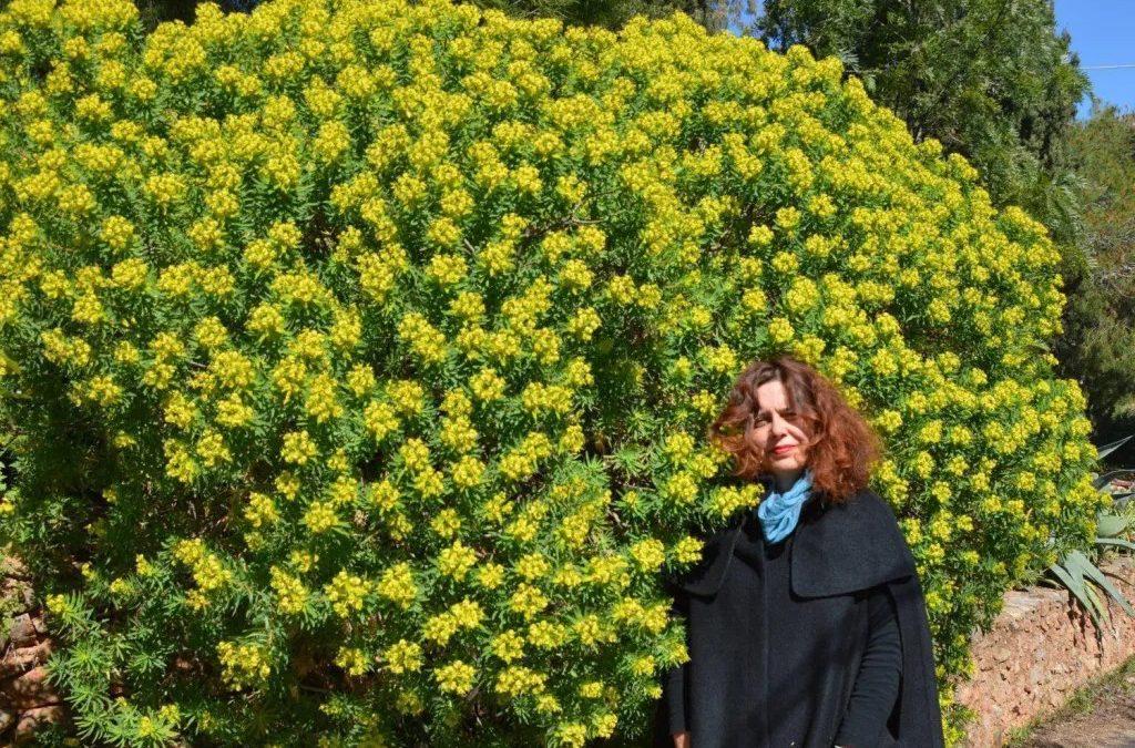 3° SIMPOSIO ECOLOGICO – 16 – Il paesaggio di Elafonisos è il fattore di attrazione più importante per i visitatori